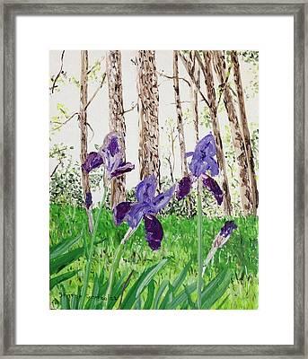 Irises Eureka Springs Framed Print by Sharon  De Vore