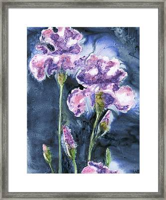Irises Framed Print by Marsha Elliott