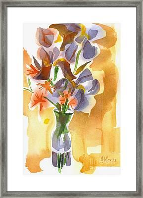 Irises With Stars Of Bethlehem Framed Print by Kip DeVore