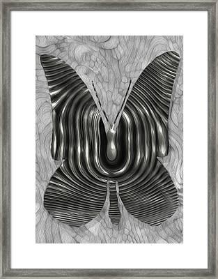 Iron Butterfly Framed Print by Jack Zulli
