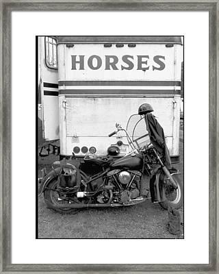 Iron Horse Framed Print by Doug Barber