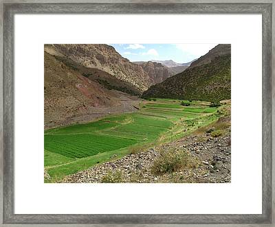 Irrigated Valley In Morocco Framed Print by Cordelia Molloy
