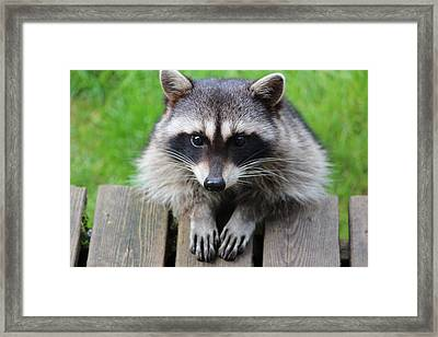 Is This The Way You Pray Framed Print by Kym Backland