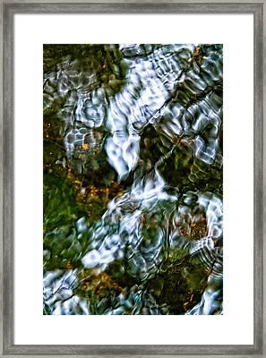 Isinglass Framed Print by Jeff Sinon