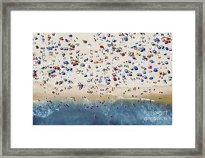 Island Beach State Park Framed Print by Mike Raabe