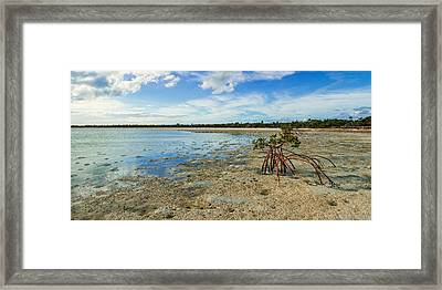 Isolated Framed Print by Chad Dutson