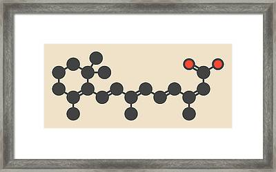 Isotretinoin Acne Treatment Drug Molecule Framed Print by Molekuul