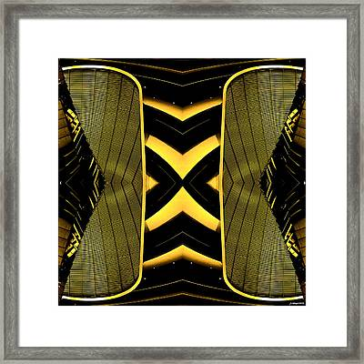 It Can Also Fly  Framed Print by Anders Hingel