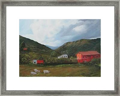 Italian Country Side Framed Print by Betty Pimm