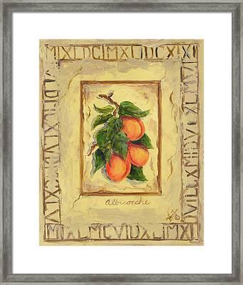 Italian Fruit Apricots Framed Print by Marilyn Dunlap