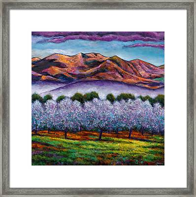 Italian Orchard Framed Print by Johnathan Harris