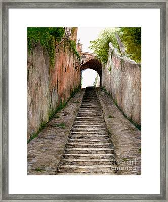 Italian Walkway Steps To A Tunnel Framed Print by Nan Wright