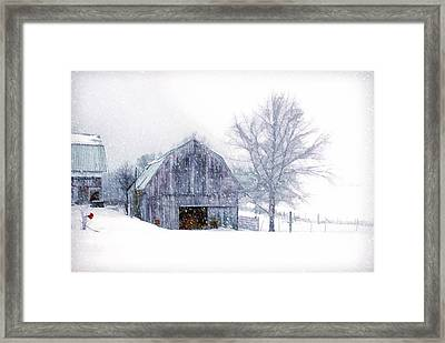 It's Cold Outside Framed Print by Mary Timman
