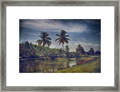 It's Hanging In The Air Framed Print by Laurie Search