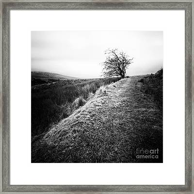 Its Hard To Imagine Framed Print by John Farnan