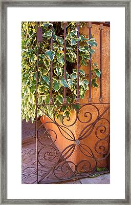 Ivy And Old Iron Gate Framed Print by Ben and Raisa Gertsberg