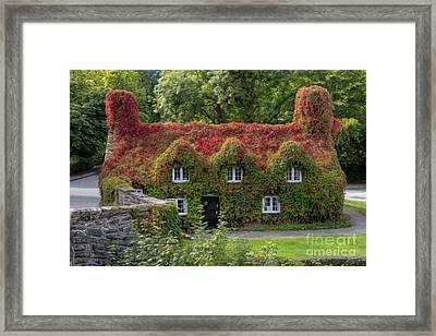 Ivy Cottage Framed Print by Adrian Evans