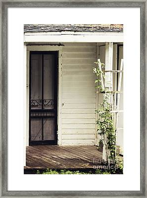Ivy On Trellis Framed Print by Margie Hurwich