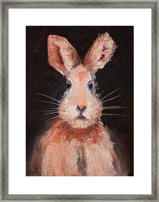 Jack Rabbit Framed Print by Nancy Merkle