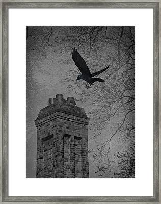 Jackdaw Flying To Chimney Framed Print by Amanda And Christopher Elwell