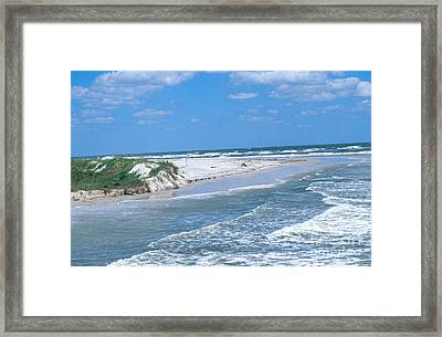 Jacksonville Florida Framed Print by Millard H. Sharp