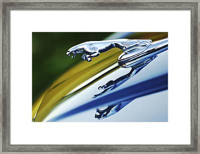 Jaguar Car Hood Ornament Framed Print by Jill Reger