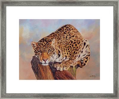 Jaguar Framed Print by David Stribbling