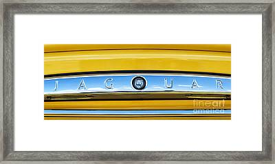 Jaguar Xk8 Panoramic Framed Print by Tim Gainey