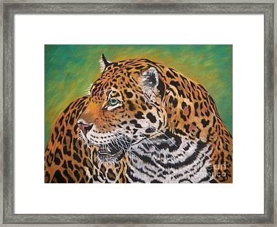 Jaguar Framed Print by Yvonne Johnstone