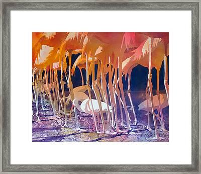 Jailbirds Framed Print by Kris Parins