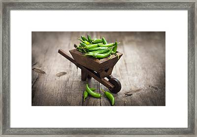 Jalapenos Chili Pepper In A Miniature Wheelbarrow Framed Print by Aged Pixel