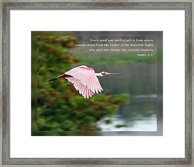 Christs Birthday Framed Print featuring the photograph James 1 17 by Dawn Currie