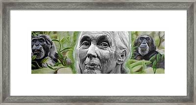 Jane Goodall Framed Print by Simon Kregar