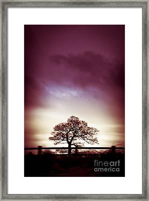 January Dusk Framed Print by Jan Bickerton