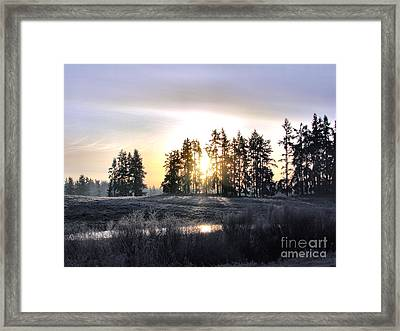 January Morning Framed Print by Rory Sagner