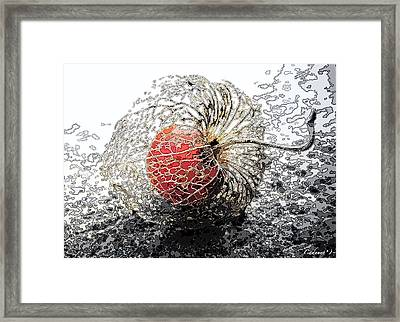 Japanese Berry Framed Print by Cadence Spalding