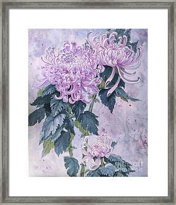 Japanese Chrysanthemum Series Part 1 Winter Framed Print by Irina Effa