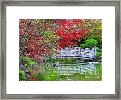 Japanese Garden Bridge In Springtime Framed Print by Carol Groenen