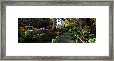 Japanese Tea Garden, San Francisco Framed Print by Panoramic Images