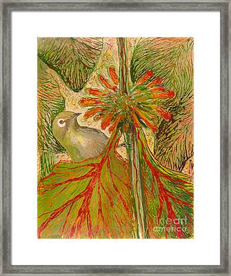 Japanese White Eye Framed Print by Anna Skaradzinska