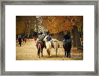 Jardins Du Luxembourg Framed Print by Elena Elisseeva