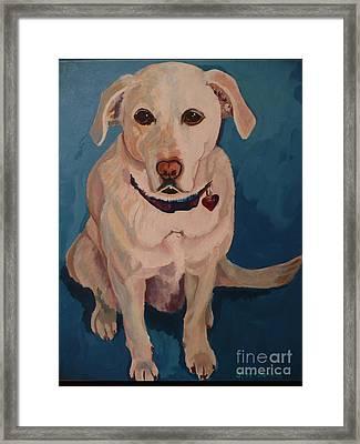 Jasper Framed Print by Janet McDonald