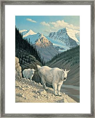 Jaspergoats Framed Print by Paul Krapf