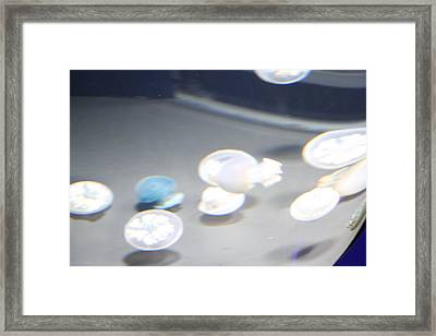Jellyfish - National Aquarium In Baltimore Md - 12126 Framed Print by DC Photographer