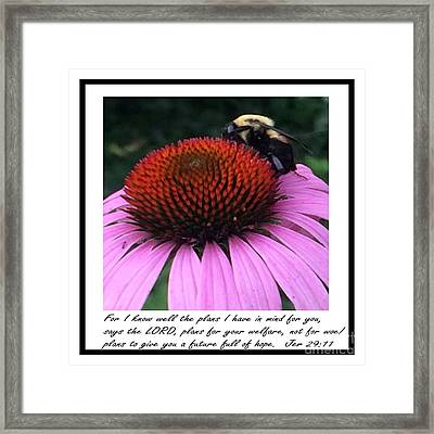 Jer 29 11 Bible Scripture By Saribelle Rodriguez Framed Print by Saribelle Rodriguez