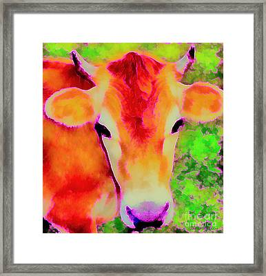 Jersey Girl - Cow - Hot Pink Pop Art   Framed Print by Janine Riley