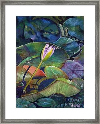 Jewel Framed Print by Caroline Street