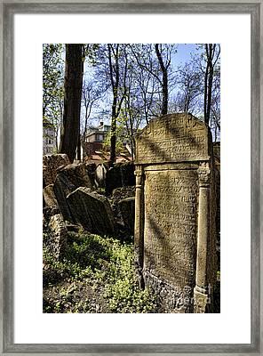 Jewish Cemetery Framed Print by Brenda Kean