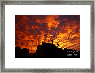 Joe Fox Fine Art - Sunset Reflecting Off Stratocumulus Cloud Deck Over The City Of Santiago Chile Framed Print by Joe Fox