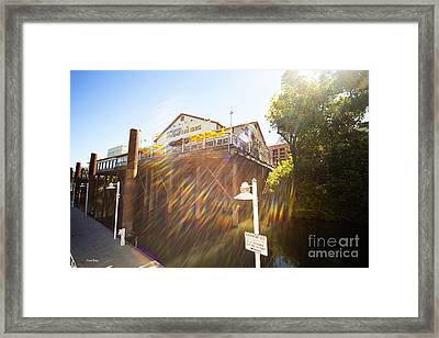 Joes Framed Print by Cheryl Young